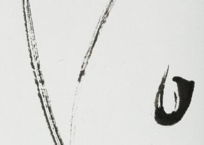 3/7 - Détail
